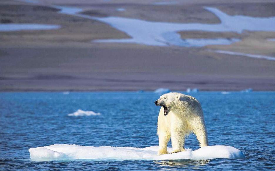 Buchcover Klimawandel – auf den Fersen der Umweltsünder